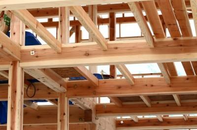 注文住宅は木造と鉄骨どちらがいい?